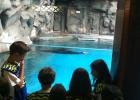 aquario_sp_06