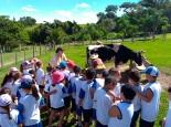 promoventos-fazendas-bona-bambini-fazendinha-imagem-10