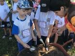 promoventos-fazendas-bona-bambini-fazendinha-imagem-7