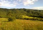 fazenda-guaxinduva-4