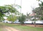 fazenda-ibicaba-19