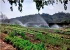 promoventos-fazenda-mae-terra-imagem-4