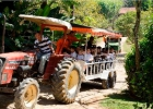 promoventos-fazenda-mae-terra-imagem-6