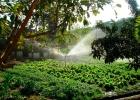 promoventos-fazenda-mae-terra-imagem-9