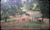promoventos-fazendas-cheiro-do-mato-imagem-2