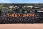 parques-tematicos-t-rex-park-imagem-3